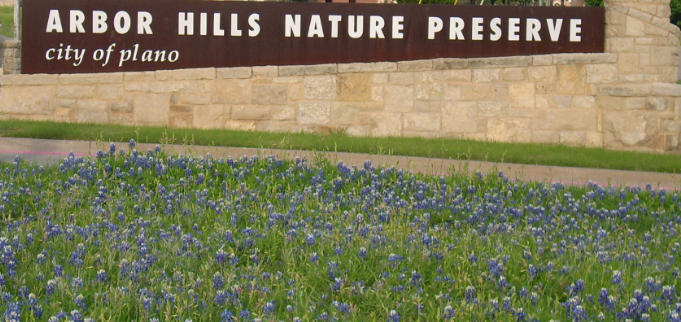 Did You Know Arbor Hills Nature Preserve Has Three Distinct Ego-regions?