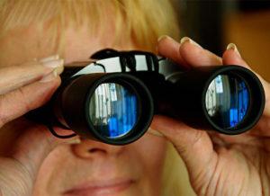 Stalking the Stakers Binoculars Real McCoys