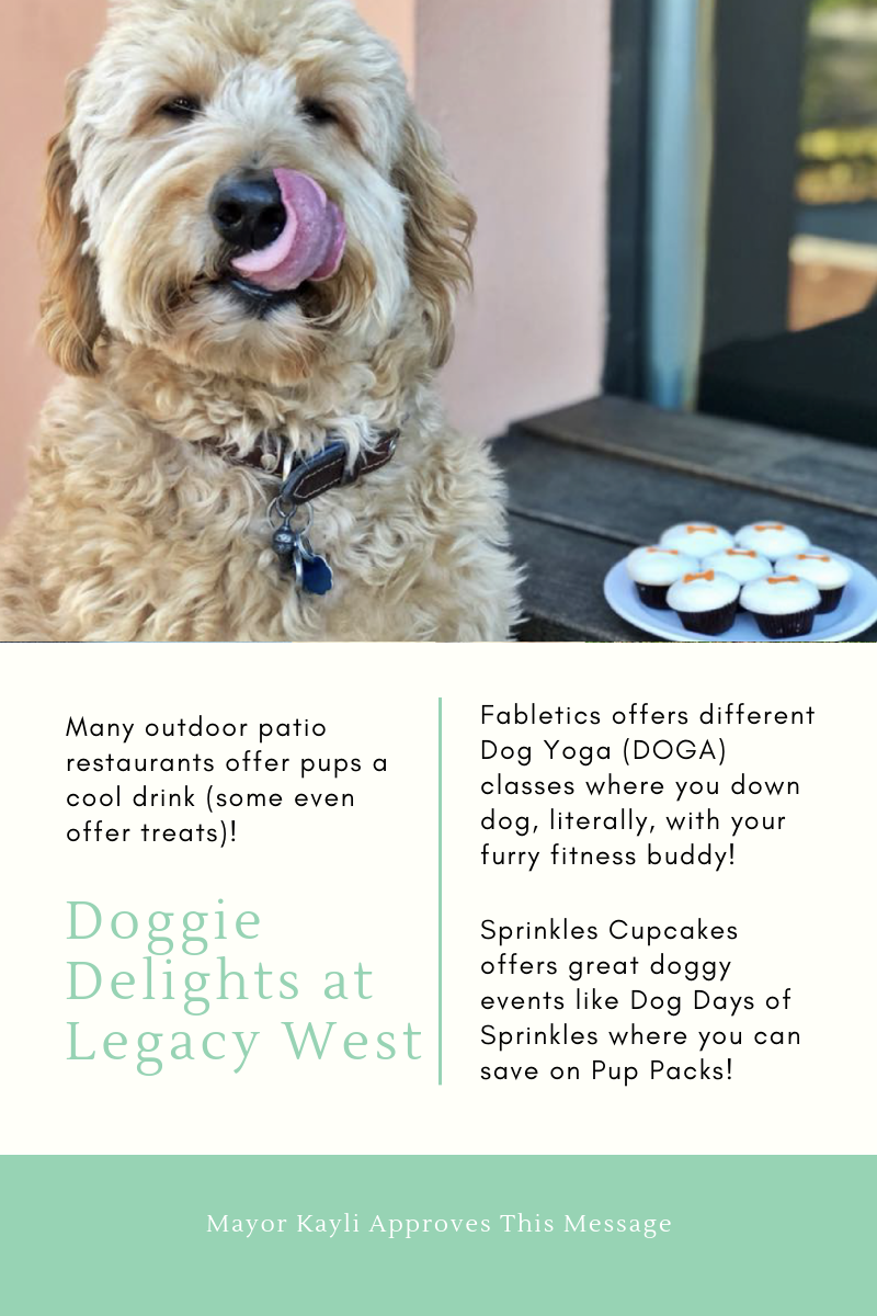 legacy west dog days fabletics dog yoga sprinkles cupcakes pup packs